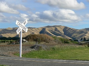 Near Blenheim, South Island, New Zealand